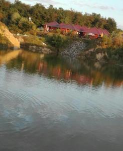 5,Vintilă Valeria,Sibiu,Țara mea